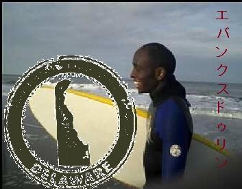 duline_surf